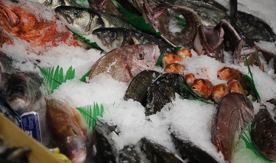 Tiendas La Quintana. Sección pescadería